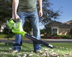 best-variable-speed-cordless-leaf-blower-300x300