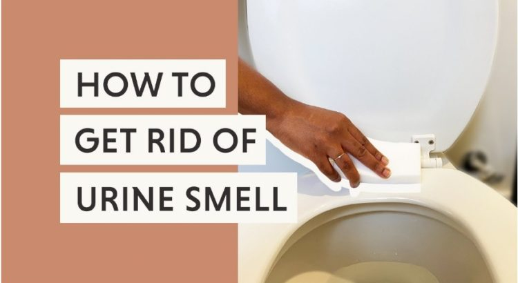 how to get rid of urine smell in bathroom